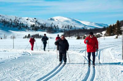 Langrenn, ski, skiturer, klassisk, skøyting, Hallingdal, Gol, Golsfjellet, Hemsedal, Valdres. Foto: Thorgeir Røer