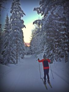 Golsfjellet. Det familievennlige fjellet. Langrenn. Ski. Hallingdal, Gol, Valdres, Hemsedal.
