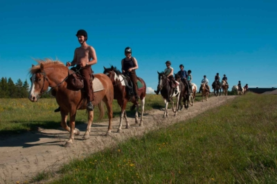 Riding, fjellriding, hesteriding, ridning. Valdres, Hallingdal, Golsfjellet, Hemsedal, Gol. Foto: Thorgeir Røer