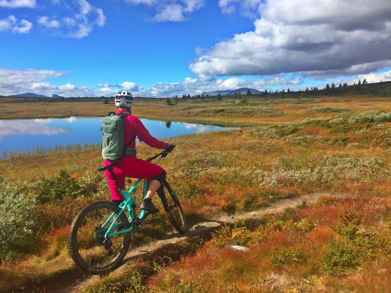Skal Gol og Golsfjellet bli Norges mest komplette sykkelreisemål?