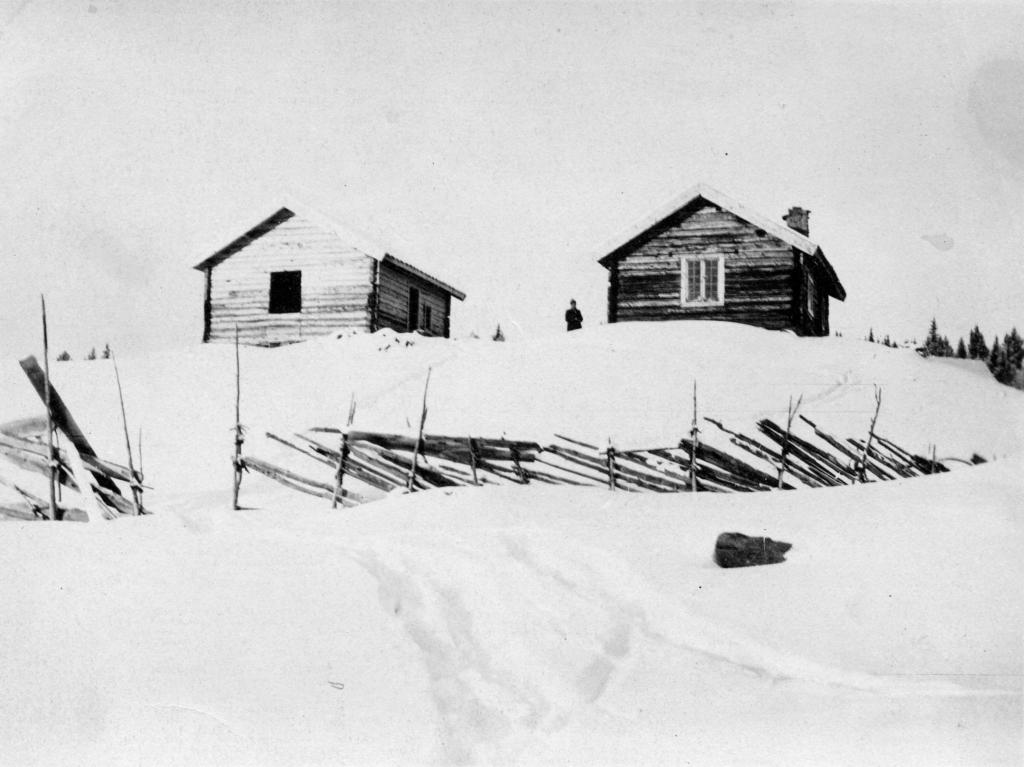Fritidsbolig, hytte, under oppføring 1916, Brautemo.