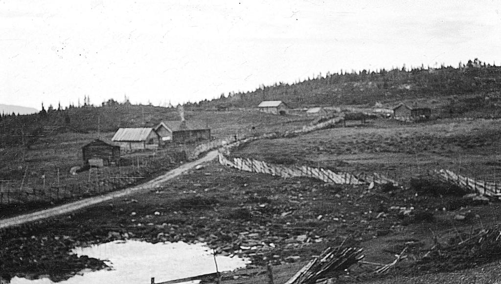 Brautemo på Golsfjellet i Hallingdal 1917.
