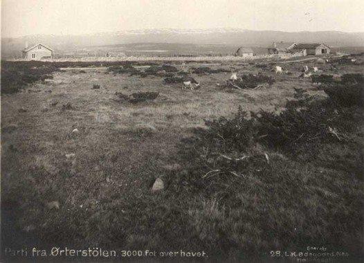 Ørterstølen før 1920.