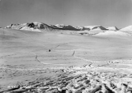 Golsfjellet ved Veslefjell ca 1940. Historien om Golsfjellet i Hallingdal.