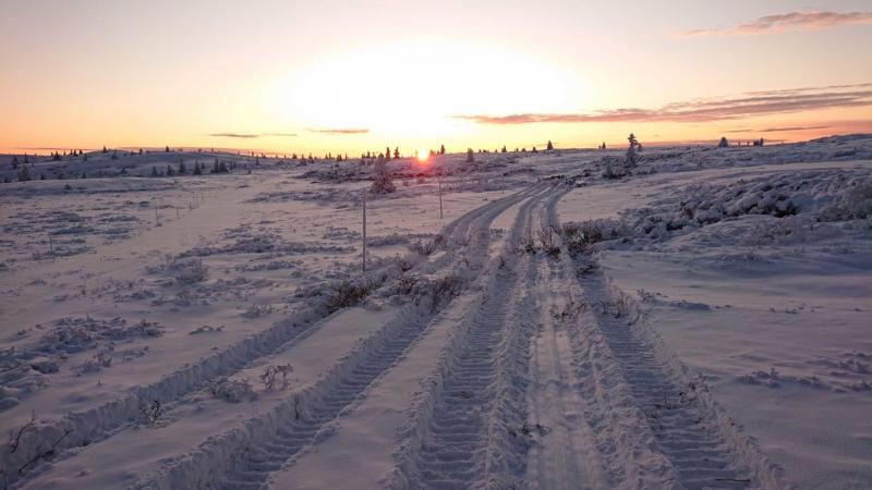 Skiløyper, grunnpreparering, Golsfjellet, Hallingdal, Valdres