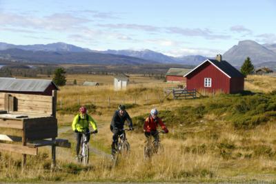 Sykling på Mjølkevegen, Stølsviddene i Valdres. Golsfjelllet i Hallingdal. Foto: Birgit Haugen