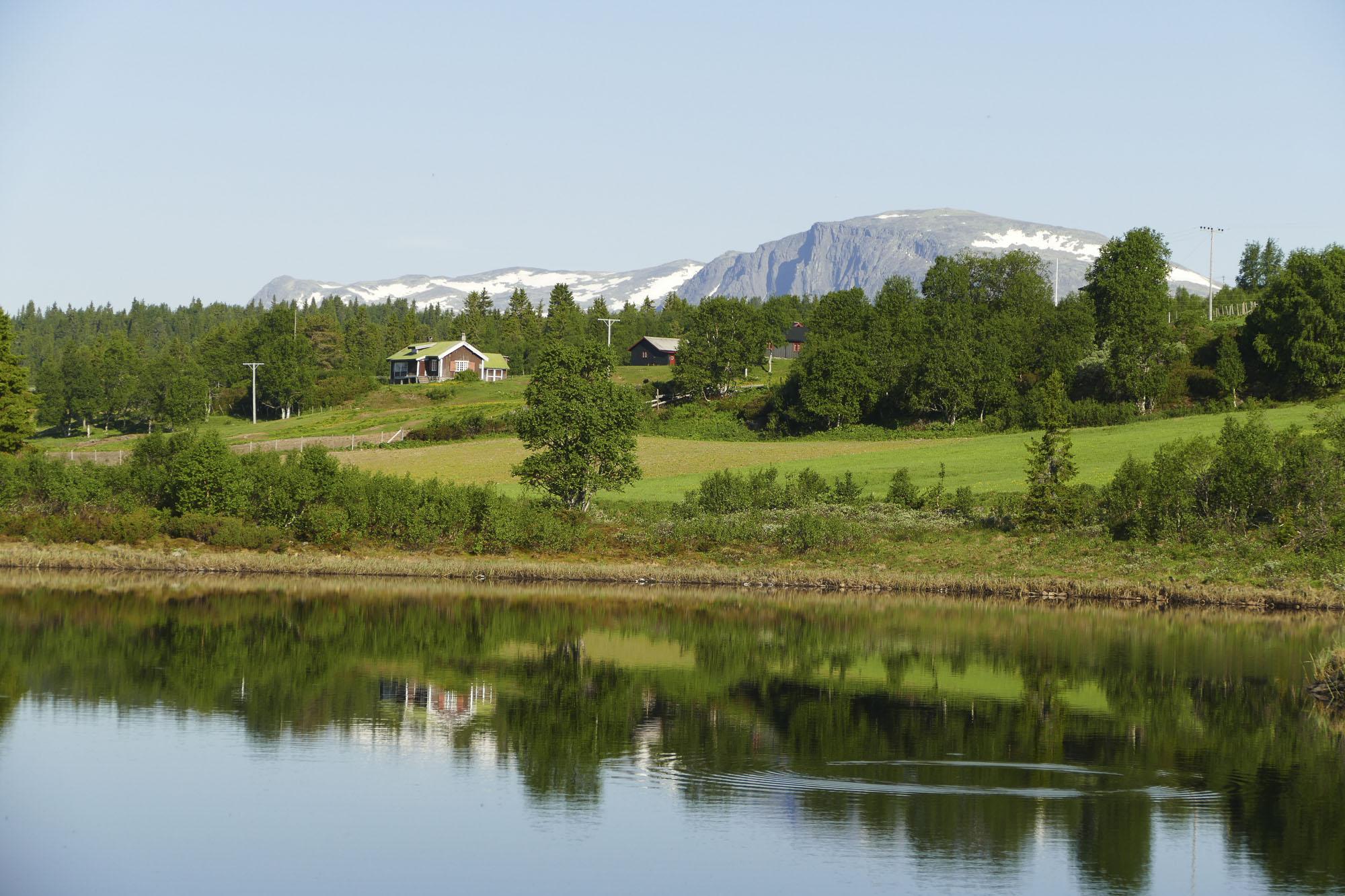 Lauvsjøen på Golsfjellet - en oase for syklister, fiskere og alle andre som vil nyte høyfjellet. Gol, Golsfjellet, Hallingdal, Valdres, Hemsedal. Foto: Birgit Haugen