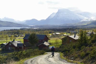 På vei fra Tyrisholt til Langestølen. Skogshorn i bakgrunn. Sykling på Mjølkevegen - Stølsviddene. Valdres, Golsfjellet, Hemsedal, Hallingdal. Foto: Birgit Haugen