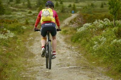 Sti og kjerrevei på Golsfjellet. Fjellsykling blir knapt bedre :-). Foto: Birgit Haugen