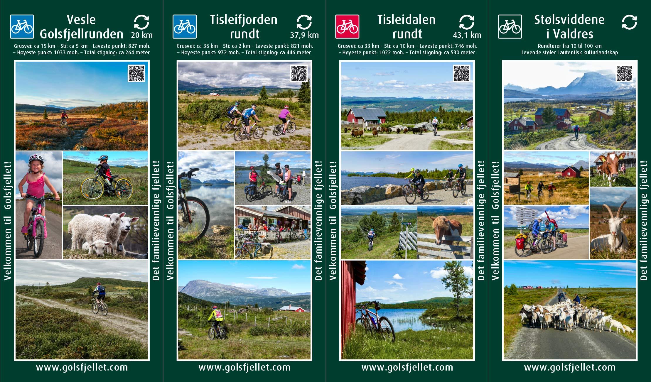 Banner Golsfjellet, Hallingdal, Valdres, TravelXpo 2020