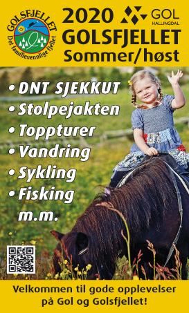 ommerkart Golsfjellet, Gol, Hallingdal, Valdres, Hemsedal. Turstier, fiskevann, sykkel, sykling, stisykling, stolpejakten.