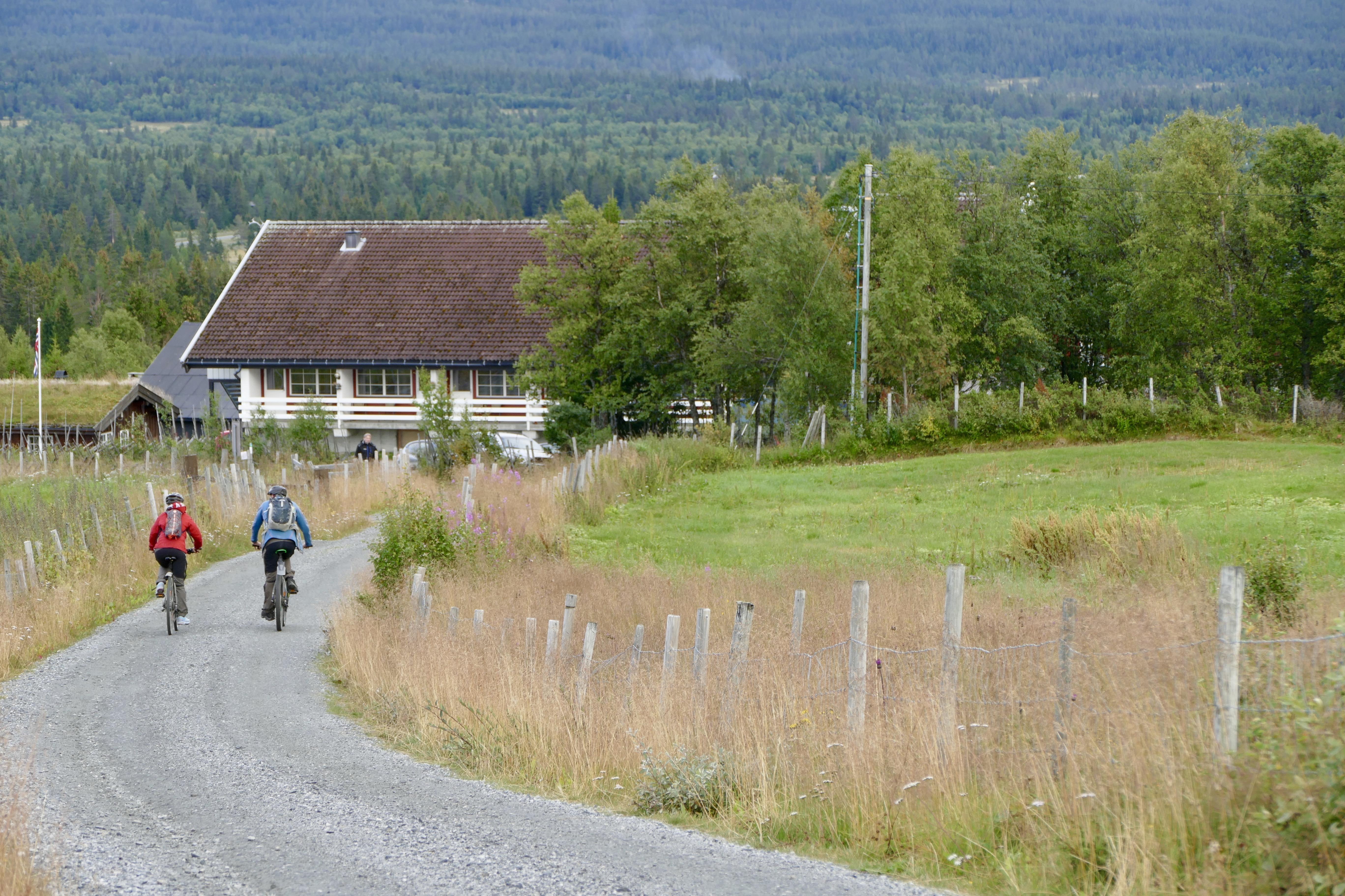 Guidede sykkelturer langs Mjølkevegen